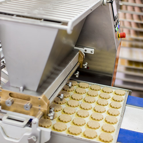 FoodProcessing